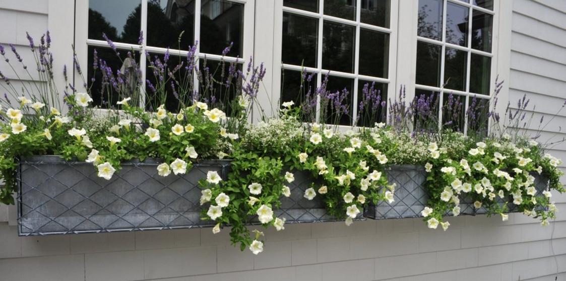 Fioriere in ferro battuto fioriere e vasi for Arredo giardino ferro battuto