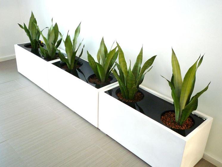 Fioriere fioriere e vasi fioriere caratteristiche - Fioriere per davanzale finestra ...