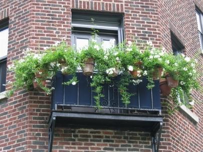 Vasi da balcone fioriere e vasi for Vasi per balcone