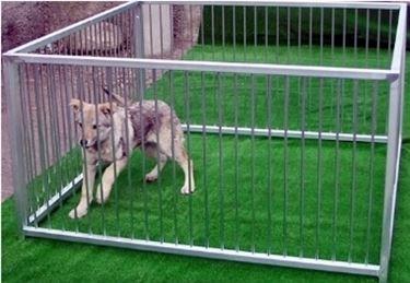 recinzione cani