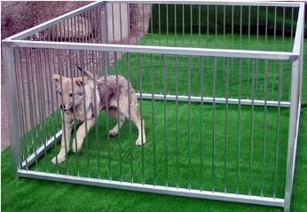 Recinzione cani recinzioni for Animali da giardino finti