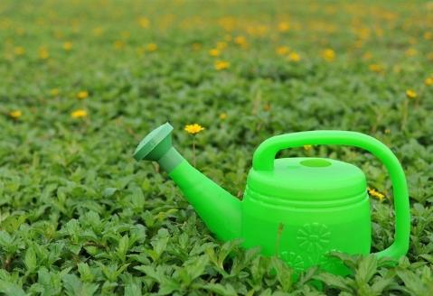 Annaffiatoio attrezzi da giardino - Attrezzi da giardino professionali ...