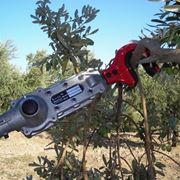 scuotitori per olive