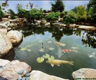 giardino acqua