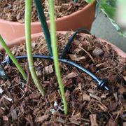 Gocciolatori impianto di irrigazione a goccia for Sistemi di irrigazione a goccia per vasi