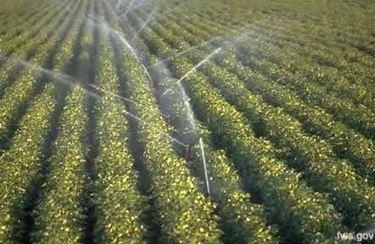 Esempio di irrigatore a intermittenza