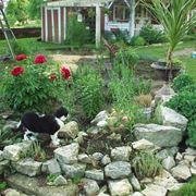 sassi per giardino