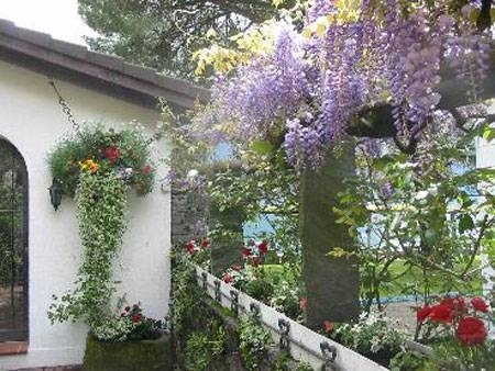 Progettazione giardini pensili giardini pensili for Realizzazione giardini pensili