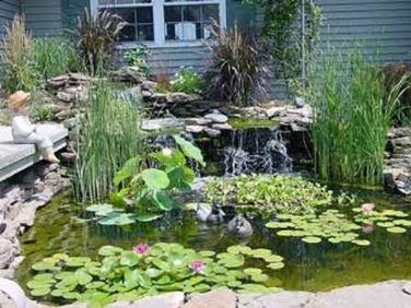 Giochi d 39 acqua giardino acqua for Free water garden designs