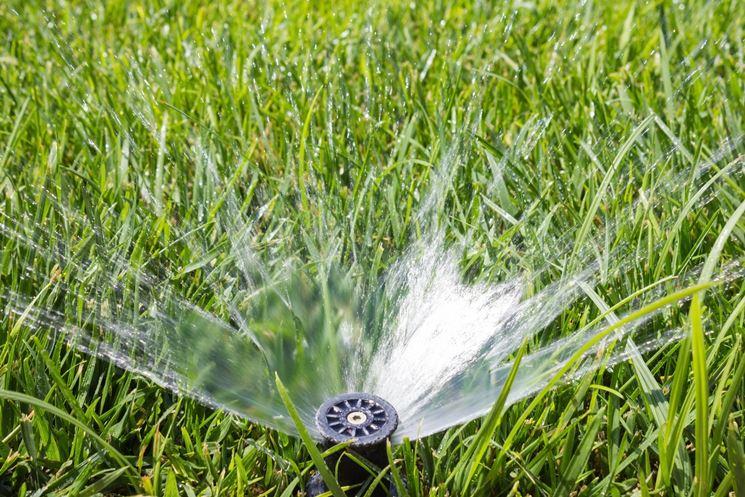 irrigazione giardino - Progettare Irrigazione Giardino